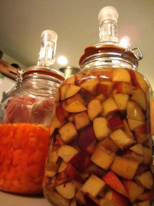 fermenty goodness - peppers & nectarines